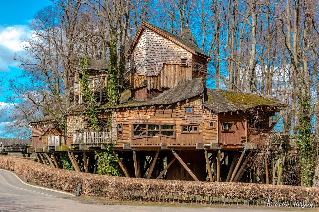 «ресторан Yellow Treehouse»