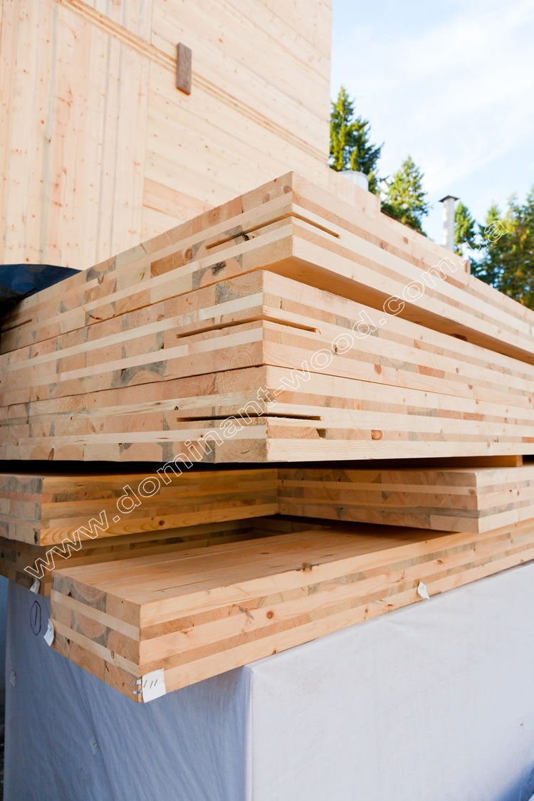 Cross Laminated Timber (X-LAM)