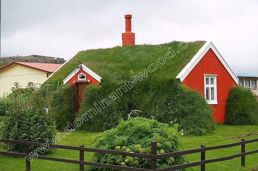 экстенсивное озеленение крыши