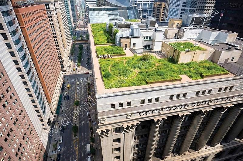 интенсивное озеленение крыши