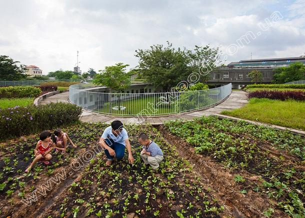 огород на зеленой крыше