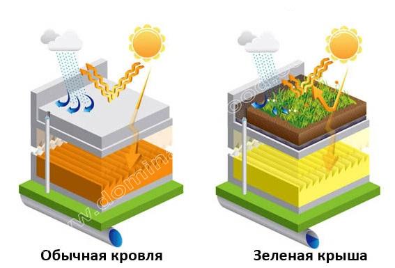 Достоинства и недостатки зелёных крыш