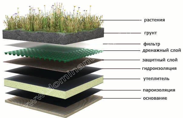 конструкция зелёных крыш