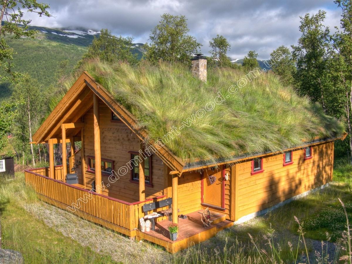 Что такое зеленая крыша?
