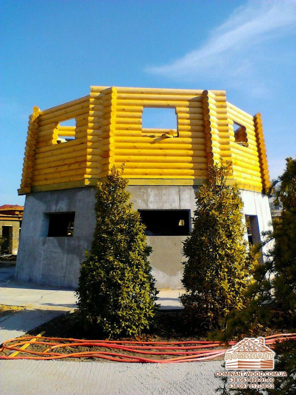 Заміські котеджі: проект нового будинку Млин - Домінант