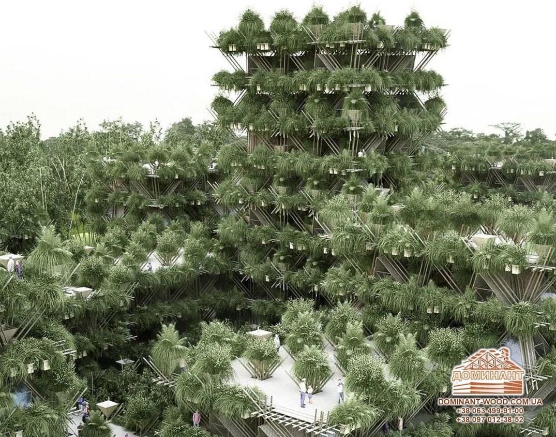 Бамбукові міста