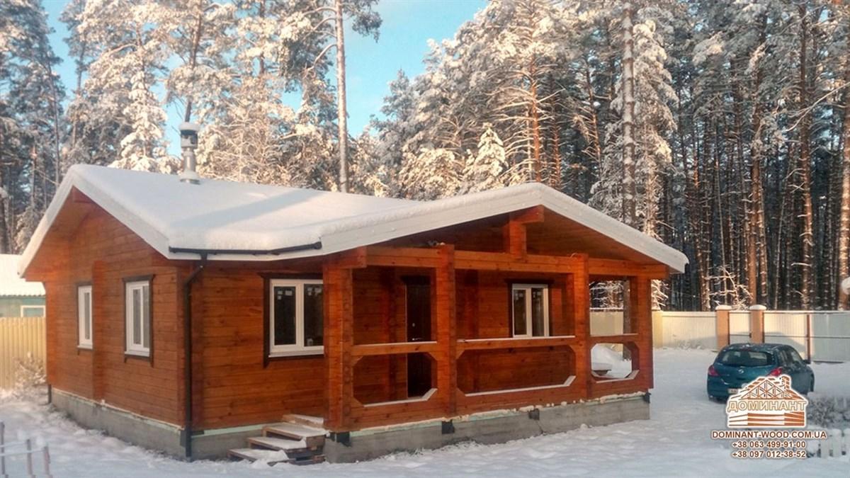 Зимовий будиночок