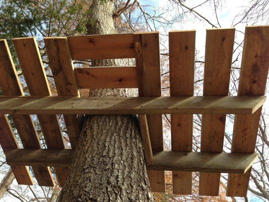 Будинки на деревах і особливості їх побудови