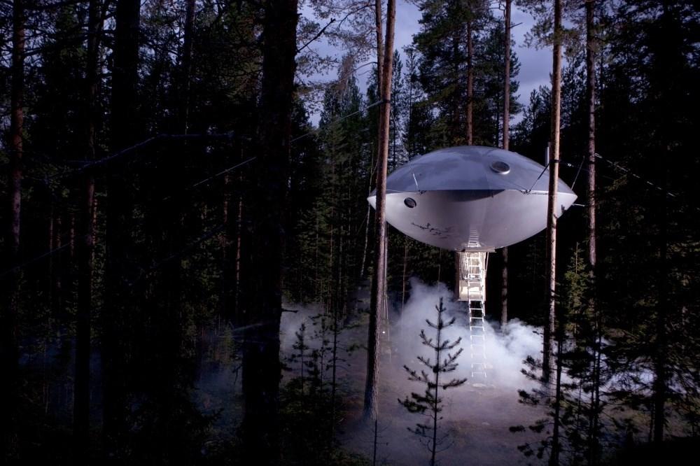 «літаюча тарілка на дереві»