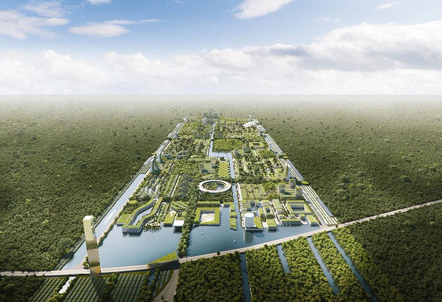 Розумне місто-ліс